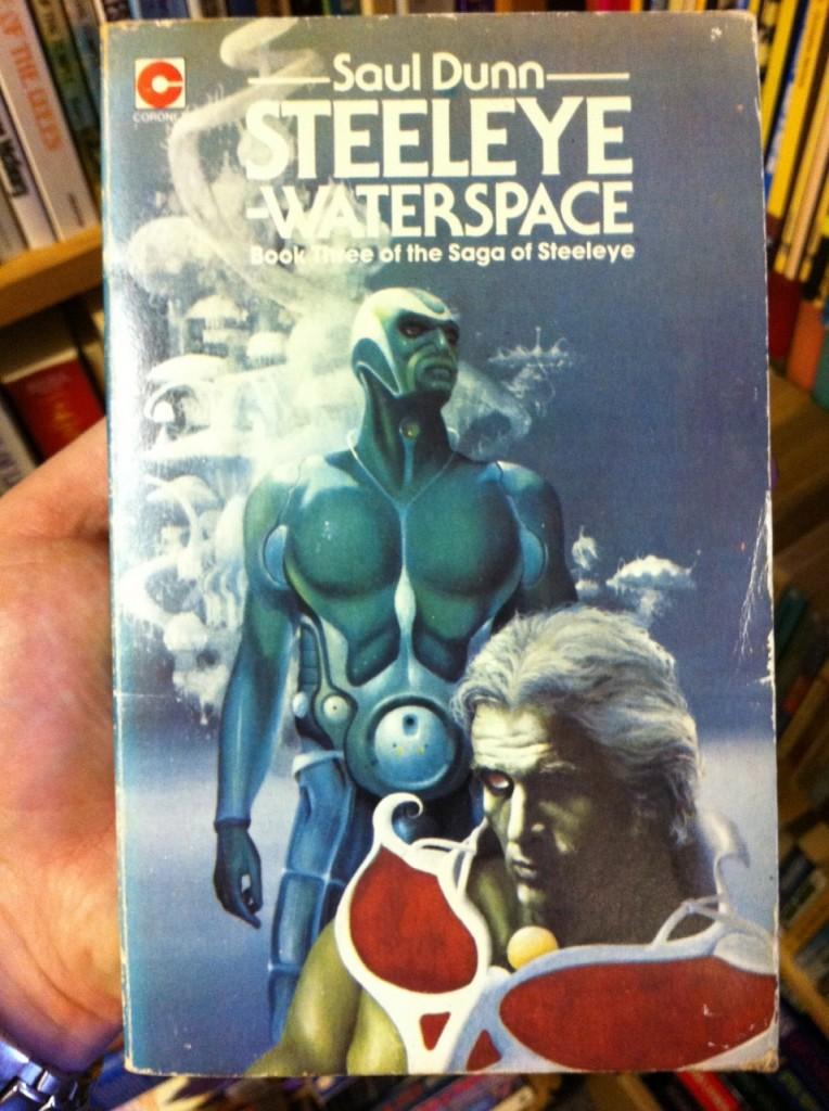 Steeleye - Waterspace by Saul Dunn